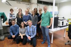 Equipe du Professeur Wim Ceelen