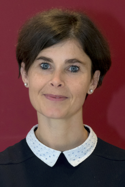 Team van Professor Christine Desmedt