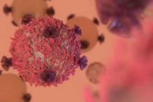 Immunothérapie : efficacité prouvée pour les cancers de sein