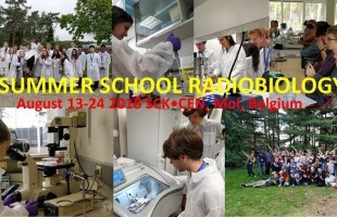 Summer School in Radiology
