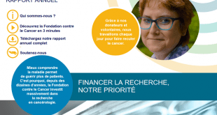 Capture d'écran Rapport annuel digital 2015